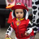 Hundreds Celebrate Halloween at Damariscotta Trunk-Or-Treat