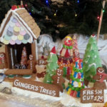Judges Announced for Gingerbread Spectacular
