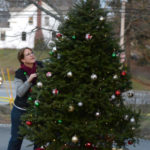 Villages of Light Sells Out Trees, Seeks Volunteers