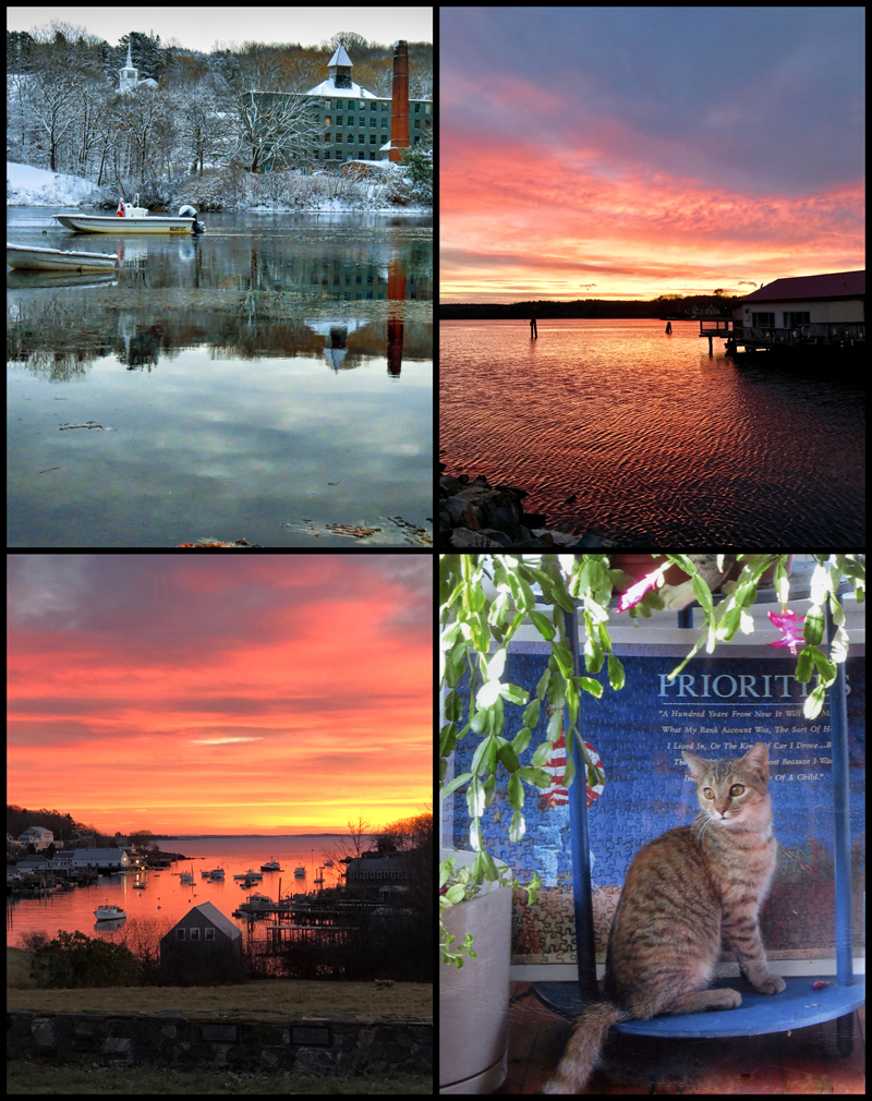 The four weekly winners of the December #LCNme365 photo contest. Voting for the monthly winner opened at noon, Wednesday, Dec. 19 and will close at 8 a.m., Monday, Dec. 24.