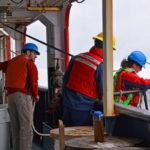 Research Unlocks Secrets of Iron Storage in Algae