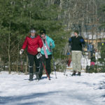 XC Ski Clinic for Adults at Hidden Valley Nature Center