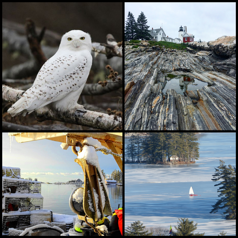 The four weekly winners of the January #LCNme365 photo contest. Voting for the monthly winner opened at noon, Wednesday, Jan. 23 and will close at 5 p.m., Monday, Jan. 28.