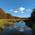 Midcoast Conservancy Adds New Preserve
