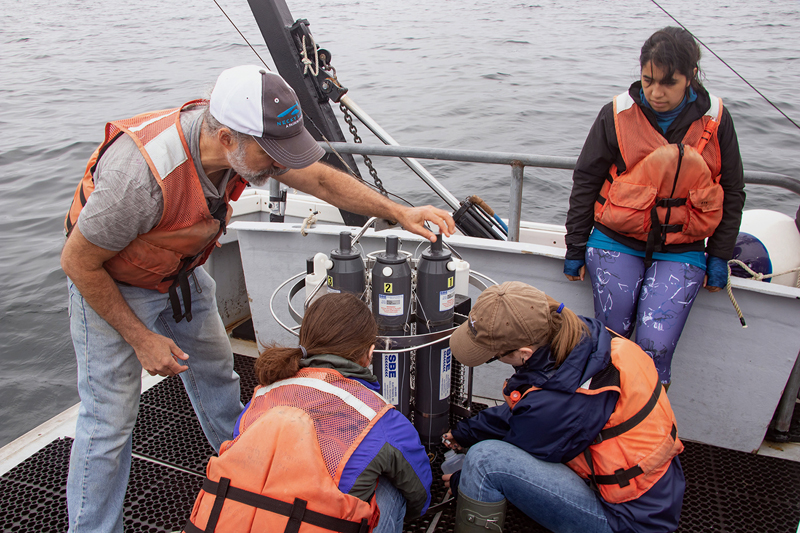 Senior research scientist David Fields teaches a group of college interns to collect water samples during a research cruise on the Damariscotta River as part of the Research Experience for Undergraduates program. Fields was recently awarded the prestigious 2019 Ramon Margalef Award for excellence in teaching and mentoring for his leadership of Bigelow Laboratory for Ocean Sciences' education programs. (Photo courtesy Bigelow Laboratory for Ocean Sciences)
