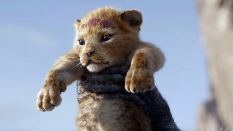 "The adorable photorealistic computer-animated baby lion in ""The Lion King,"" coming to Harbor Theater on July 19. (Movie still courtesy Harbor Theater)"