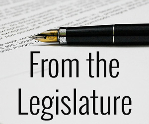 From the Legislature: Getting a Bill to the Finish Line
