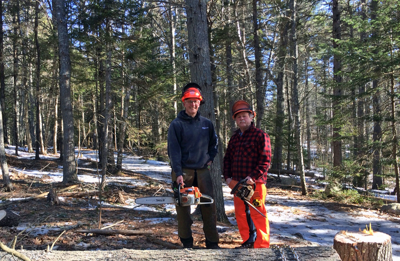 Volunteer Alan Bellows (left) and lands manager Michael Warren remove trees in preparation for expanding the parking area at Ovens Mouth West.