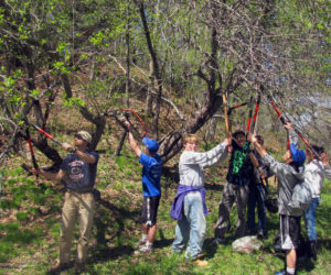 Celebrate Earth Day with Trail Work, Train Ride, Hike