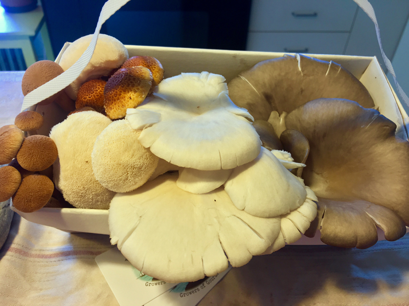 A basketful of mushrooms from Island Mushroom Co. (Suzi Thayer photo)