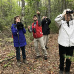 Spring Warbler Walk with Land Trust
