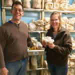 A World of Mushrooms on Westport Island
