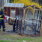 Newcastle Chicken Coop Burns