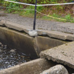 Newcastle, Nobleboro to Split Cost for Fish Ladder Walkway