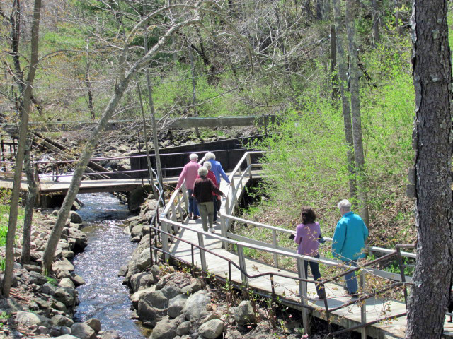 Visitors stroll along the Damariscotta Mills fish ladder.