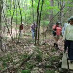 Midcoast Conservancy Hiking Series Begins