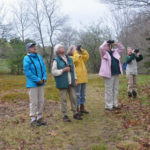 Land Trust to Host International Migratory Bird Walk