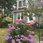 Southport Charmer Part of Boothbay Home and Garden Tour