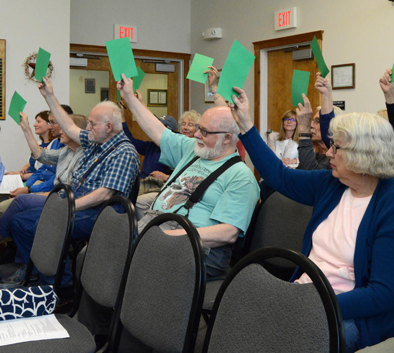 Damariscotta voters approve a lease of 5 acres of the town's former landfill site to Sundog Solar LLC during a special town meeting June 19. (Evan Houk photo)