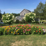 Bremen Public Library Garden Tour is July 17