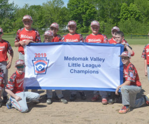 """<span class=""""entry-title-primary"""">Wildcats win Medomak Little League baseball championship</span> <span class=""""entry-subtitle"""">Wildcats 10 - Panthers 2</span>"""