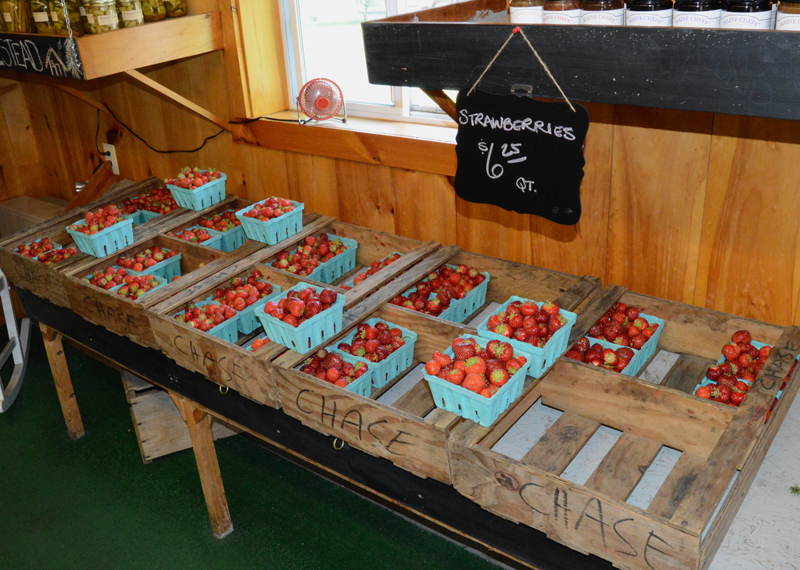 "Fresh strawberries at the Clark Farms stand in Damariscotta. The farm did not offer a pick-your-own option this year, but owner Robert ""Jigger"" Clark said it will still have a full strawberry season. (Evan Houk photo)"