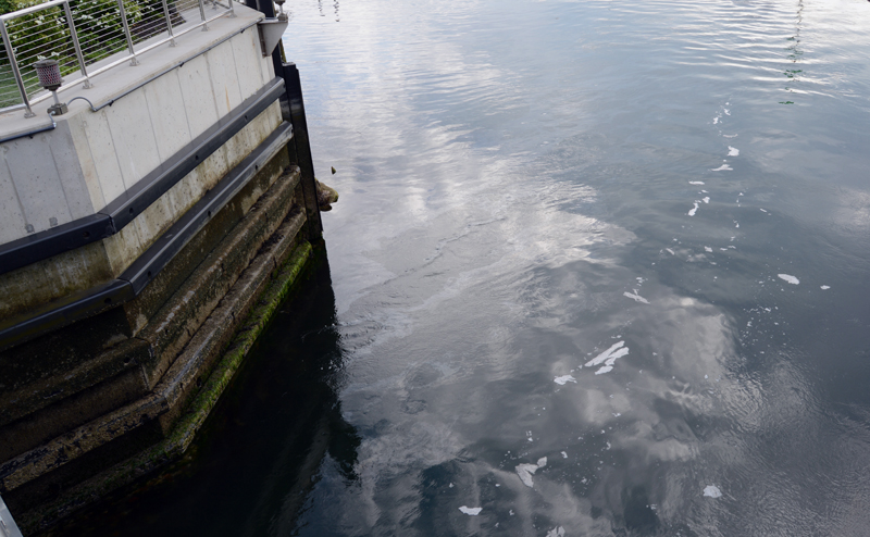 A sheen is visible in the water under the South Bristol bridge from a diesel fuel spill the evening of Tuesday, July 16. (Evan Houk photo)