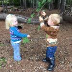 Damariscotta Montessori Parent-Toddler Play Group Starting
