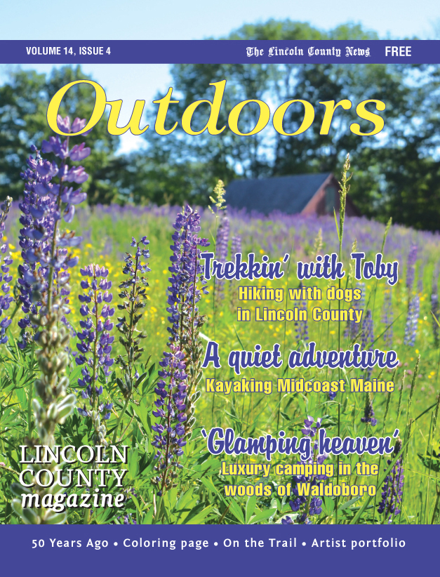 "Third Place, Best Supplement Cover: ""Outdoors,"" Megan Hyson"