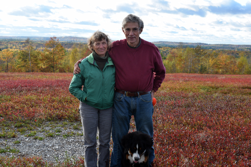 Marianne and Tony Marple with their dog, Max, in their blueberry field. (Jessica Clifford photo)