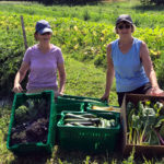 Lincoln County Gleaners Deepen Community Roots with Volunteerism