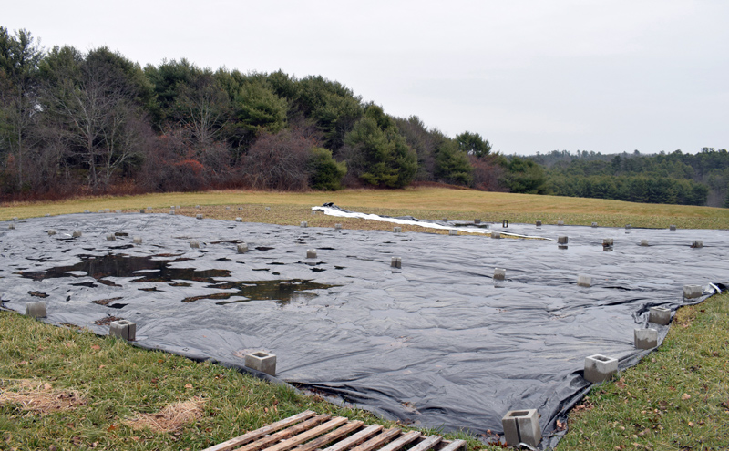 A new 1.5-acre patch of farmland recently purchased by Coastal River Conservation Trust for use by Twin Villages Foodbank Farm. Farm Manager Sara Cawthon said the land is covered with a tarp to prevent weeds from growing. (Evan Houk photo)