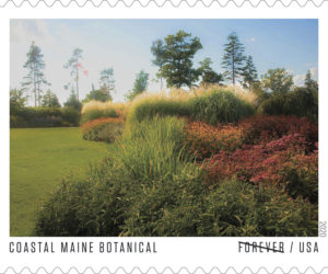 Coastal Maine Botanical Gardens will be one of the garden venues featured in the 2020 Forever stamp series from the U.S. Postal Service titled American Gardens. (Image courtesy David P. Coleman/U.S. Postal Service)