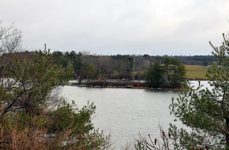 Central Maine Power Co. is exploring the possibility of building a floating road to this island in Great Salt Bay in Newcastle. CMP needs to replace the poles, according to Newcastle officials. (Evan Houk photo)