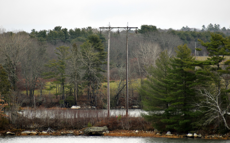 Central Maine Power Co. poles tower over the trees on an island in Great Salt Bay, Newcastle. CMP is exploring the possibility of building a floating road to the island to replace the poles. (Evan Houk photo)