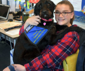 Medomak Middle School seventh grader Addy Ruggieri holds Tilla, the school's therapy dog. (Alexander Violo photo)