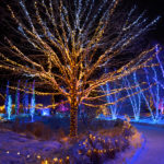 Gardens Aglow Ticket and Room Packages