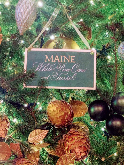 Maine's state flower is represented alongside the state flowers of the other 49 states on the official White House Christmas tree. (Photo courtesy Shirley McLaren)