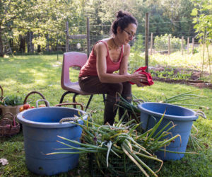 Erica Berman, co-founder of the Newcastle farm Veggies to Table, cleans produce at the nonprofit farm. Veggies to Table donated more than 4,250 pounds of organic produce and flowers to more than 30 local organizations and families in 2019, its first year in operation. (Photo courtesy Erica Berman)