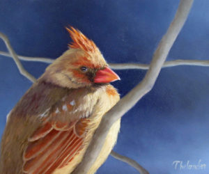 Liliana Thelander's oil painting of a cardinal.