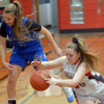 Falcons Soar Over Wiscasset