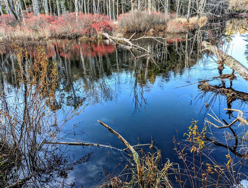 The trail at Crooked Farm Preserve offers beautiful views of the Pemaquid River. (Photo courtesy Walt Barrows)