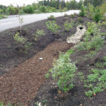 Advanced Training in Sediment and Erosion Control