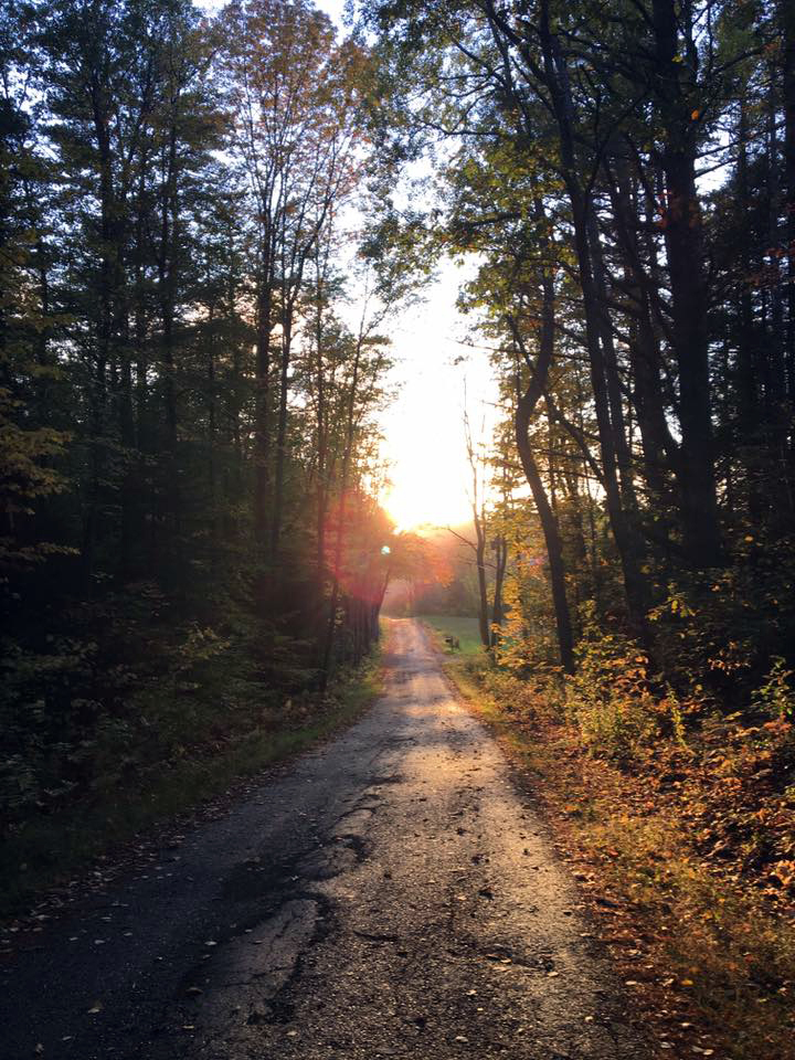 The autumnal sun sets over Kavanaugh Road, Newcastle. (Photo courtesy Lee Emmons)