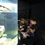 Budding Scientists Experience Gulf of Maine Research Institute