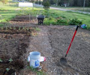 A Morris Farm community garden plot.