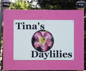 This sign welcomes people to Tina's Daylilies, located on East Pond Road in Jefferson.