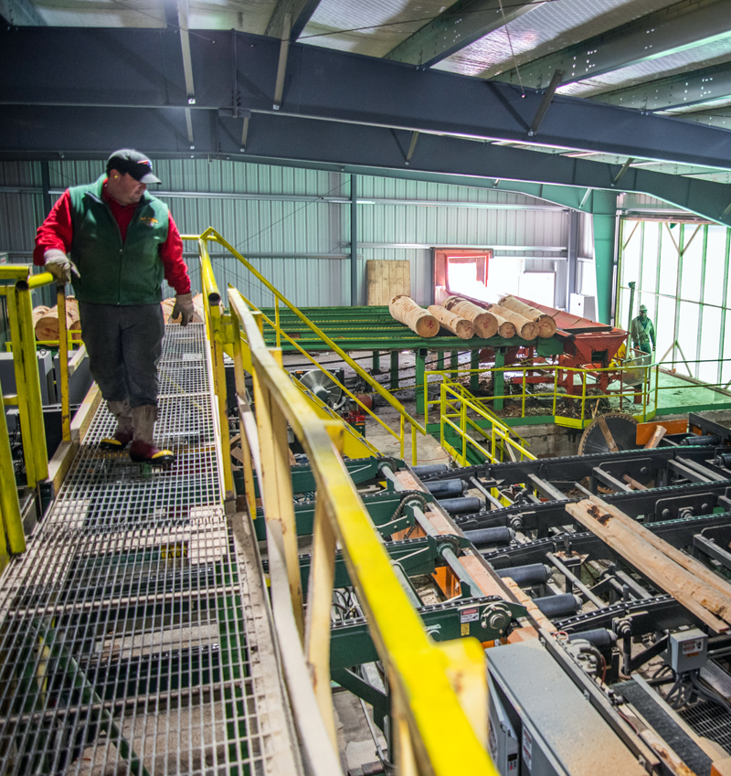 """N.C. Hunt Lumber President Rob Hunt surveys the mill floor from a catwalk March 24. Hunt says he is the fourth or fifth generation of his family to work in the timber industry. """"This family has always been cutting timber, chasing cows, and playing in dirt,"""" he said with a laugh. (Bisi Cameron Yee photo)"""