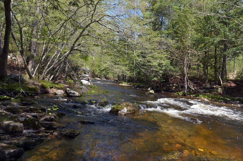 Water cascades down the Sheepscot River off the Patricktown Trail on the Palermo Preserve. (Paula Roberts photo)
