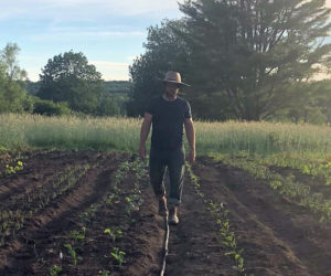 Farmer Alex Beaudet of Pemaquid Falls Farm checks on field crops.